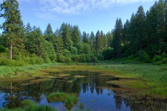 wilderness state park full hookup sites